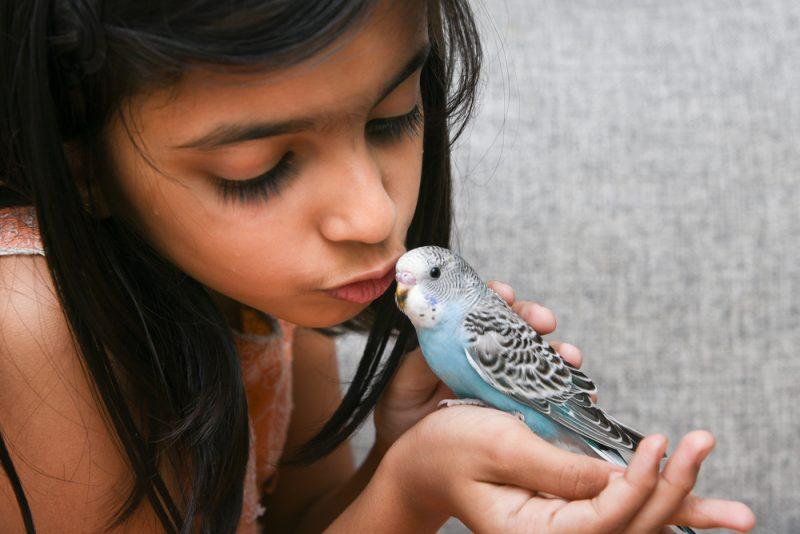 perruche et fille